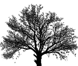 Black_and_white_tree